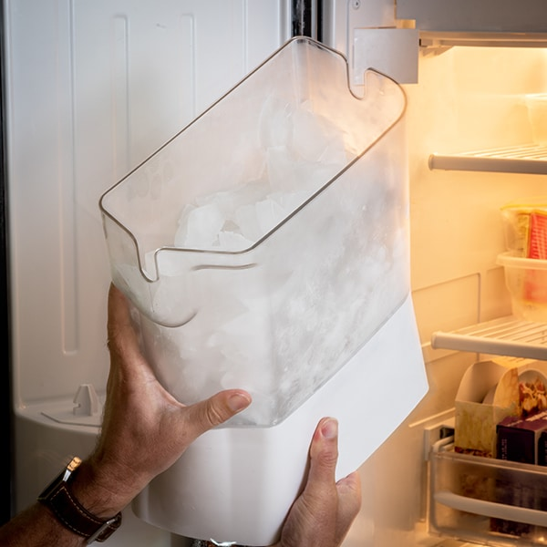 clean refrigerator ice maker